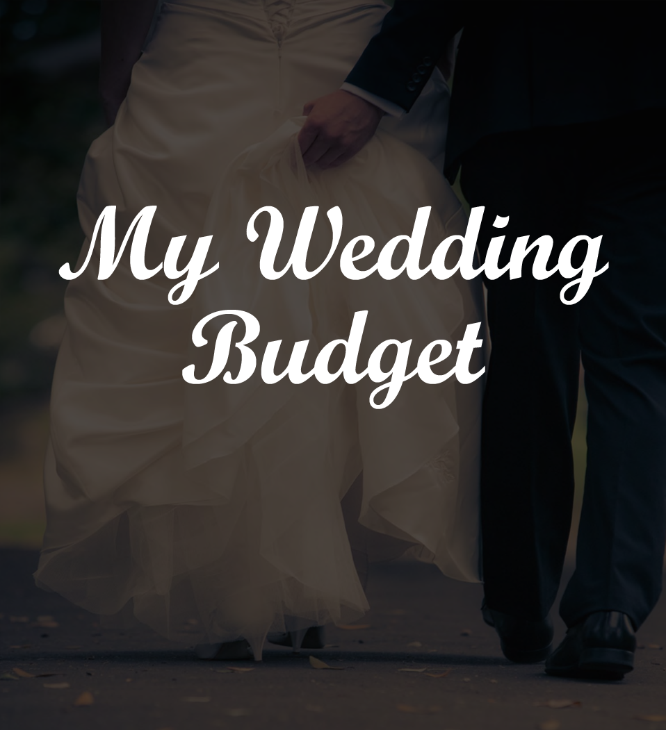 Formulated Wedding Budget Template - (Free to Download)